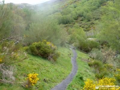 Montaña Palentina-Fuentes Carrionas;ruta de carlos v la silla de felipe ii bola del mundo madrid en